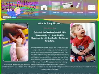 Baby Moves Franchise
