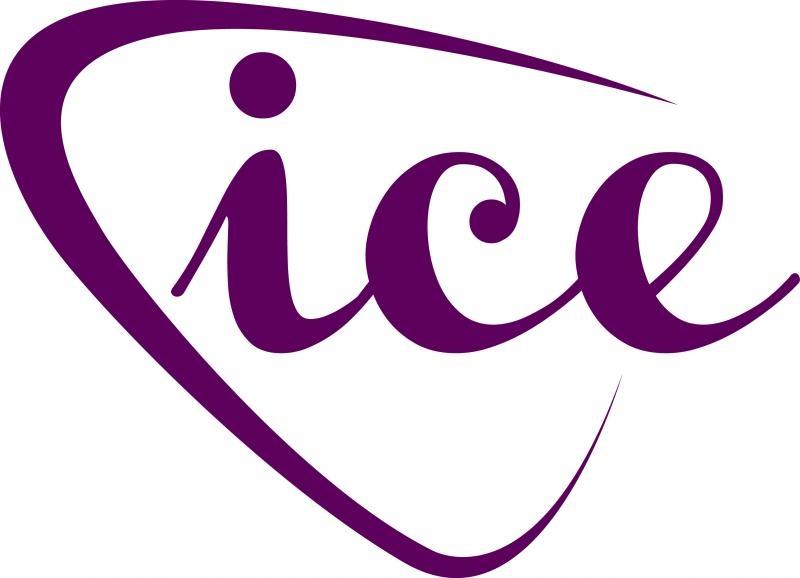 Ice Jewellery Consultants