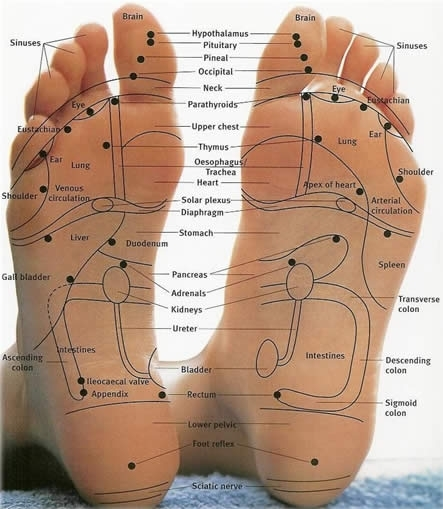 Holistic Body and Sole