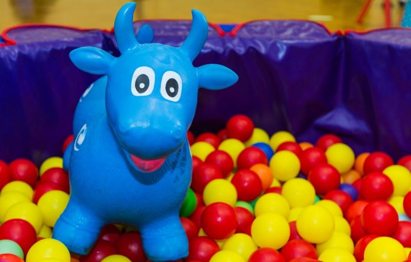 Bluey & Baloo event childcare specialists