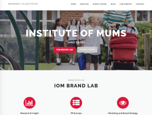 Surveys of Mums (and Dads)